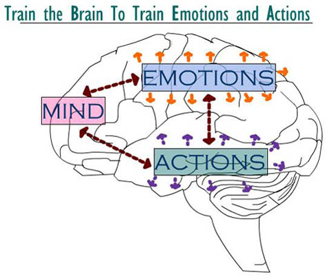 Mind, Emotion, and Brain